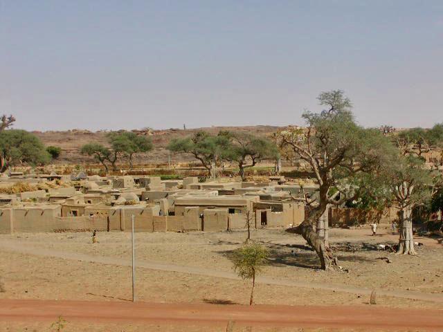 leven in droog gebied mali